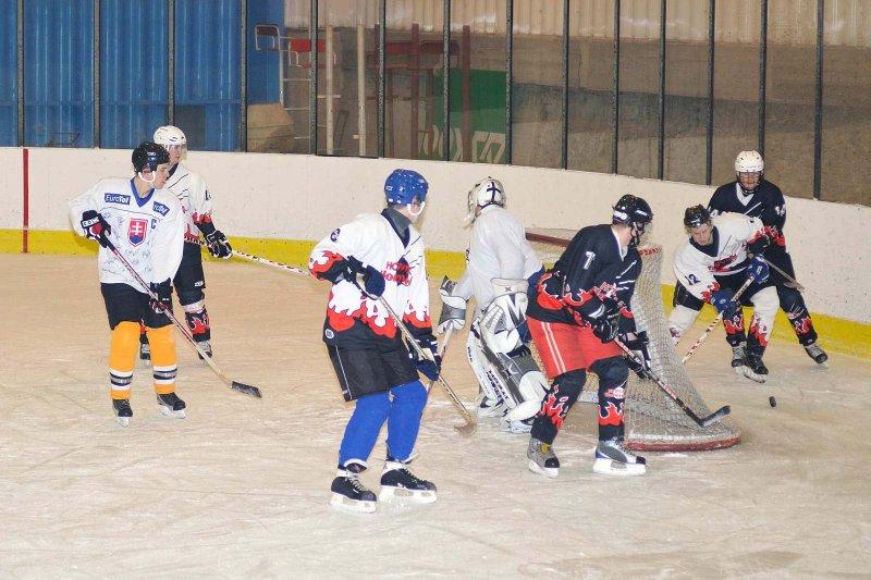 hokej-100203-019