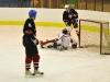 hokej-100203-004