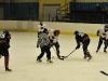 hokej-100203-006