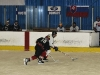 hokej-100203-010